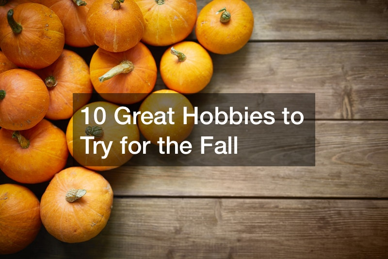 interesting new hobbies to try
